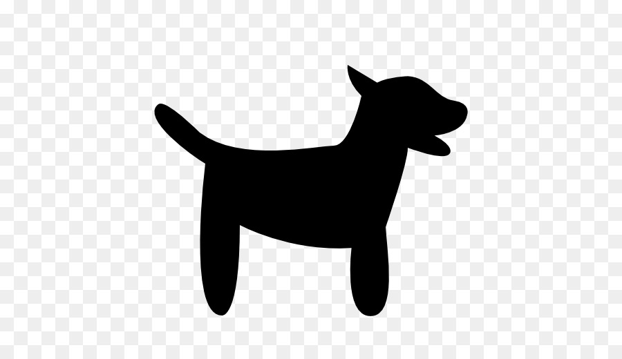 900x520 Puppy Computer Icons Pet Akita Jack Russell Terrier