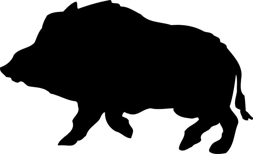 984x600 Hog Shopability