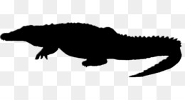260x140 Crocodile Png And Psd Free Download