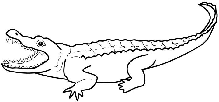720x335 Alligator Clipart Silhouette