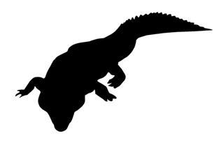 320x205 Alligator Silhouette 4 Decal Sticker