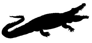 320x149 Crocodile Clipart Panda