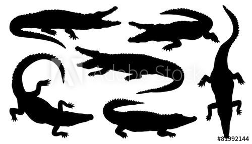 500x286 Crocodile Silhouettes