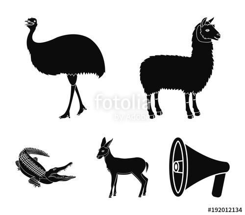 500x438 Lama, Ostrich Emu, Young Antelope, Animal Crocodile. Wild Animal