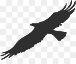 260x220 Free Download Bird Bald Eagle Silhouette Clip Art