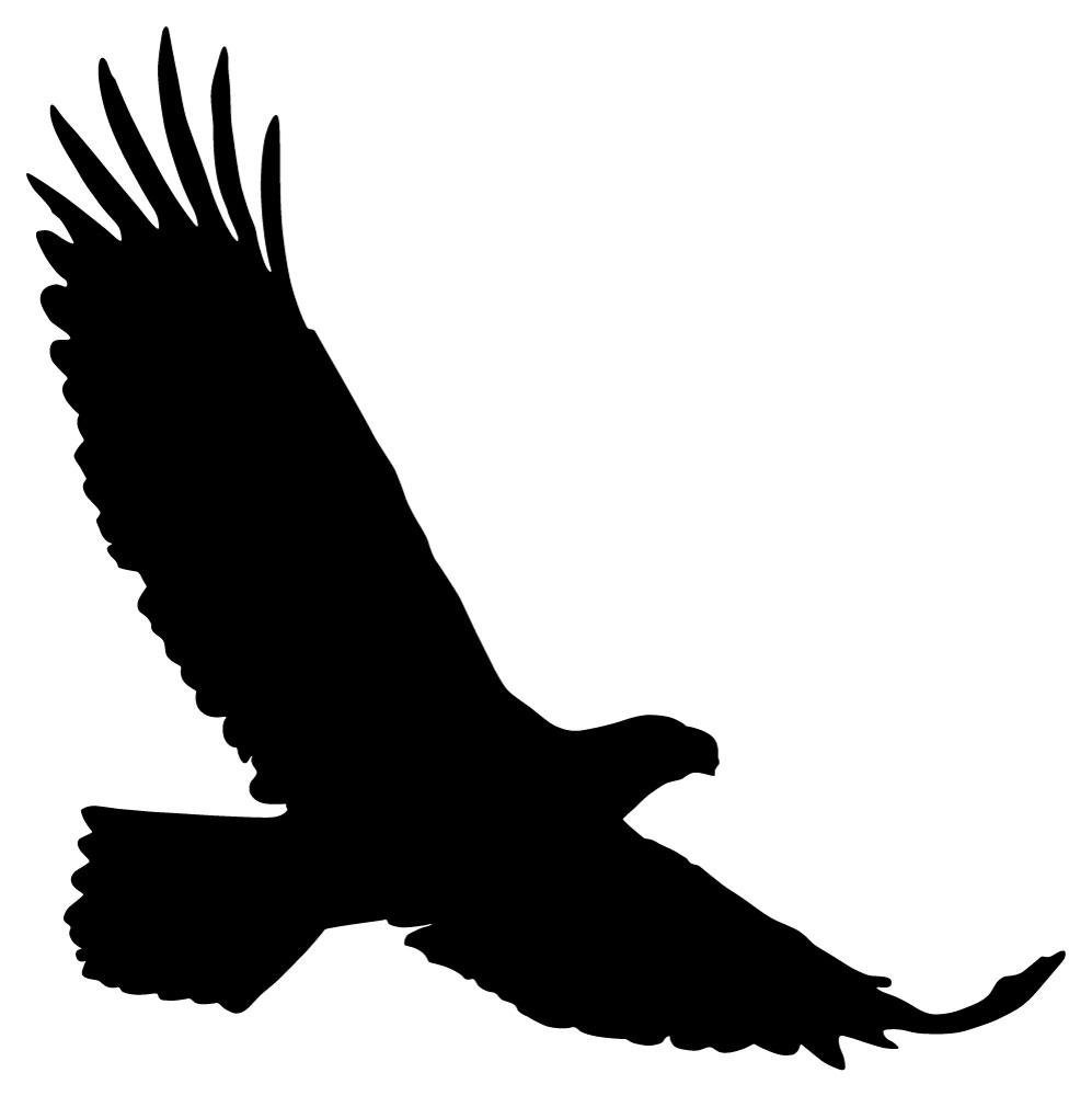 997x1000 Black Realistic Eagle Silhouette Wall Decal By
