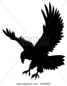 236x301 American Bald Eagle With Pen And Ink Drawing Of American