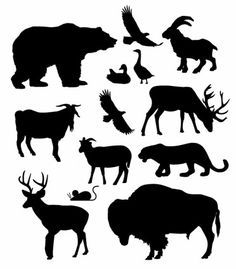 236x269 American Bison Silhouette Collection