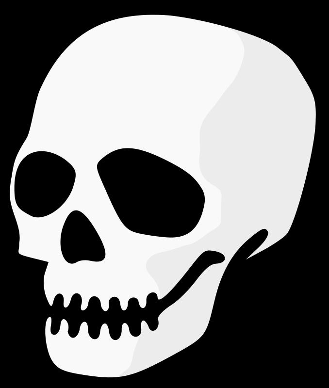 678x800 Human Skull Clipart