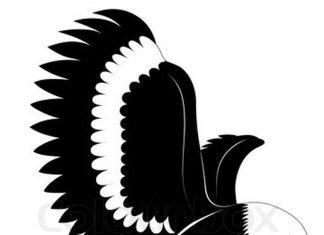 324x235 Eagle Tattoos