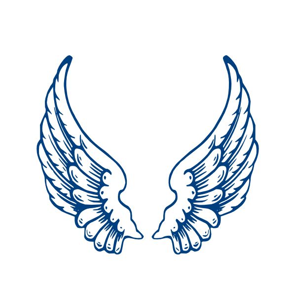 600x600 Cool Clipart Wing