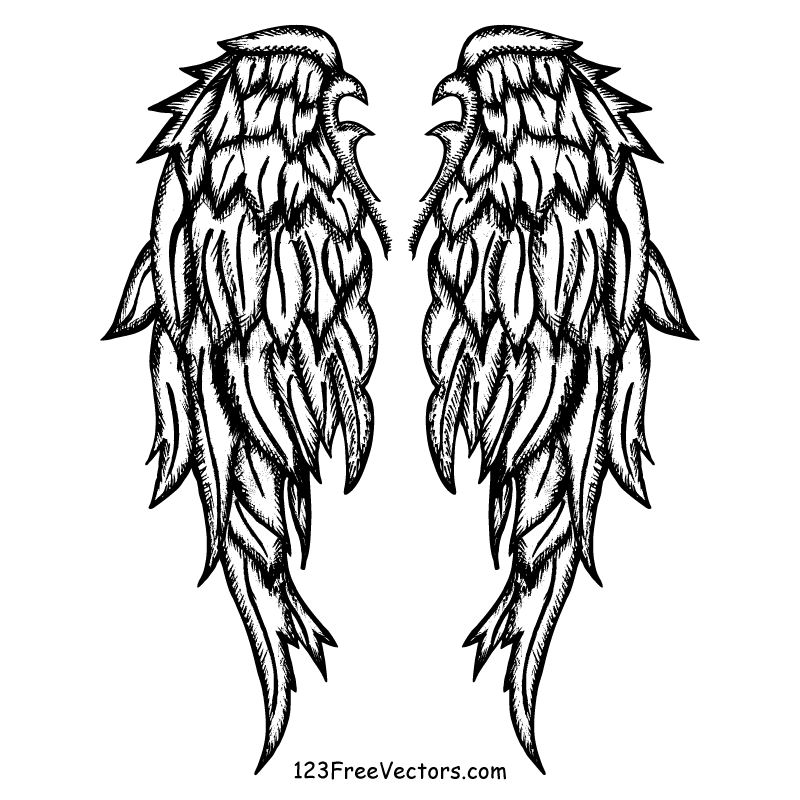 800x800 Free Hand Drawn Angel Wings Vector 123freevectors