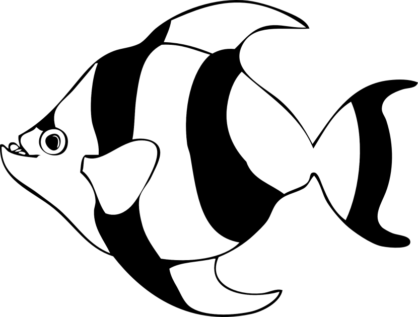830x630 Angelfish Clipart Black And White Collection