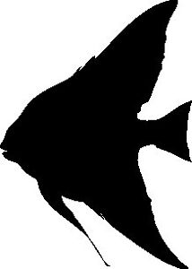 214x300 Angel Fish Silhouette Car Decal Sticker Ebay