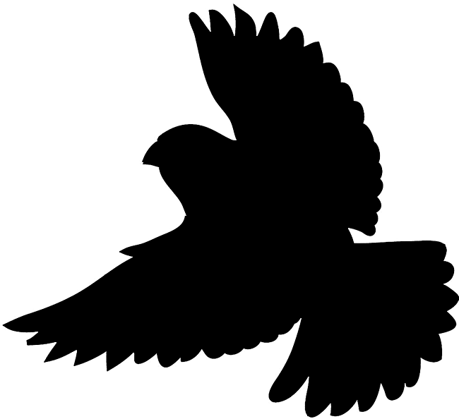 650x594 Bird Silhouette Silhouette Of Birds Clipart Image