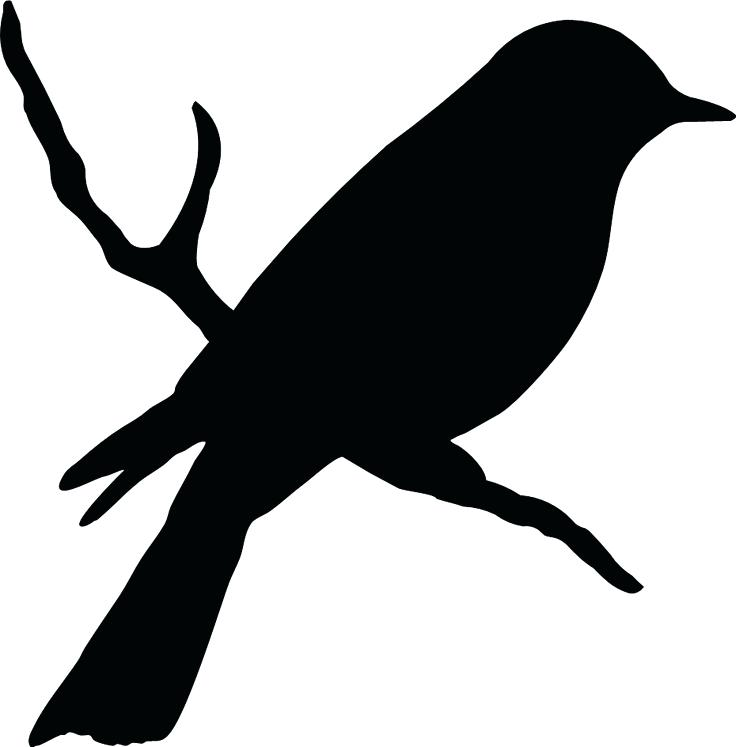 736x747 Vector Silhouette Ravens Birds Outlines Stock Vector Vector