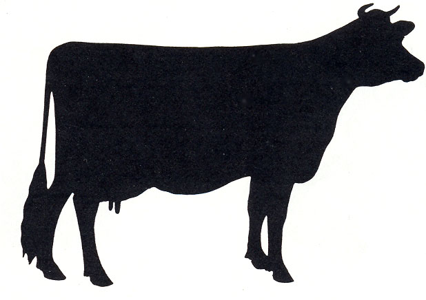 618x436 Cow Silhouette Cow, Silhouette And Free