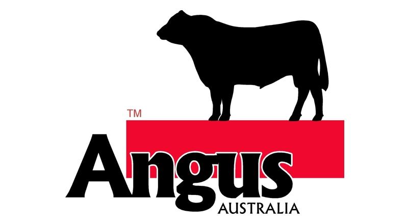 800x440 Logo Design Angus Australia Alternative Concepts