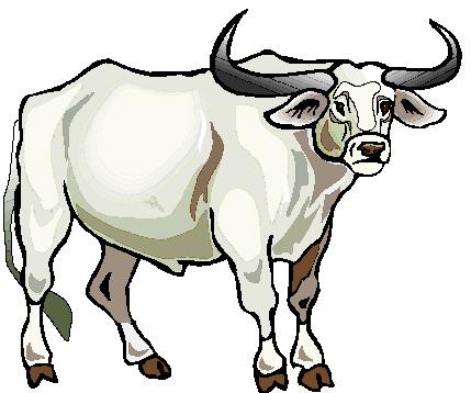 429x358 Angus Bull Silhouette Clipart