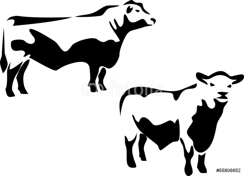 1000x722 Aberdeen Angus Bull Wall Sticker Wall Stickers
