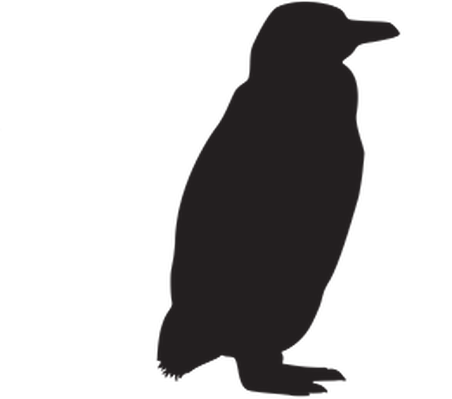 452x399 Animal Silhouettes Clipart The Arts Media Gallery Pbs