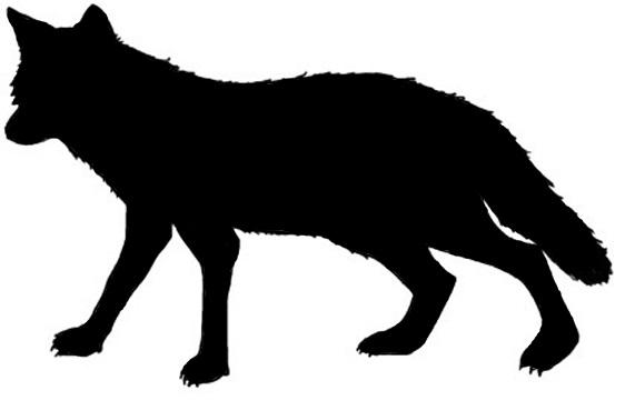 562x360 Coyote Clipart Silhouette