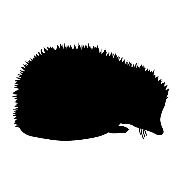640x640 Hedgehog Animal Silhouette Free Illustrations
