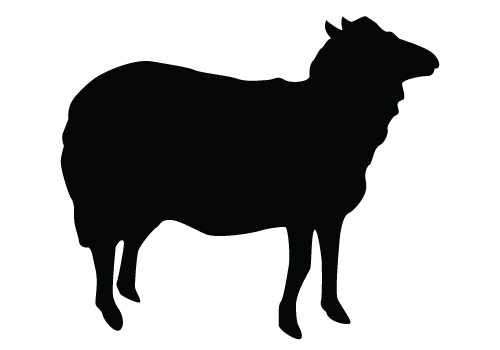 500x350 Sheep Silhouette Clipart