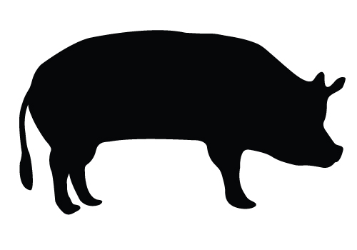 500x350 Show Hog Silhouette Clipart