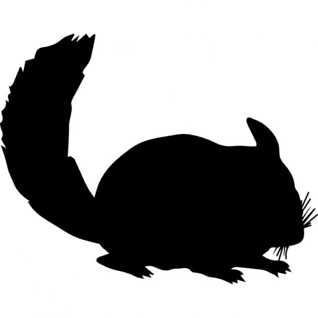 626x626 Chinchilla Mammal Animal Silhouette Icons Free Download