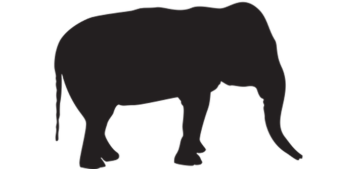 710x334 Animal Silhouettes Clipart The Arts Media Gallery Pbs