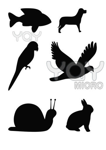 362x512 59 Best Animal Silhouette Images On Silhouettes