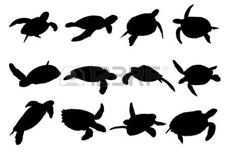 450x300 Collection Of Turtle Vector Silhouettes Stock Vector Silhouette