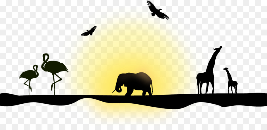900x440 Northern Giraffe Silhouette Euclidean Vector Elephant