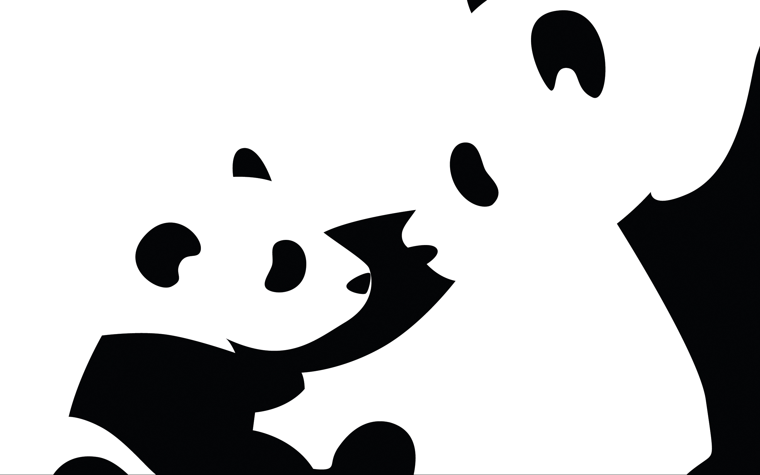 2516x1574 Panda Full Hd Wallpaper And Background Image 2516x1574 Id72516
