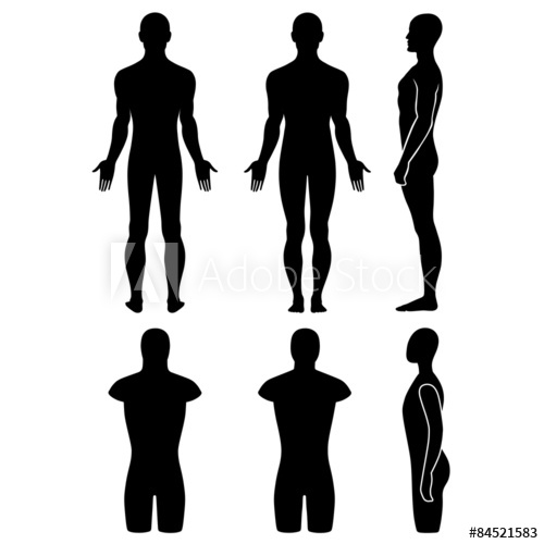 500x500 Male Mannequin Outlined Silhouette Torso