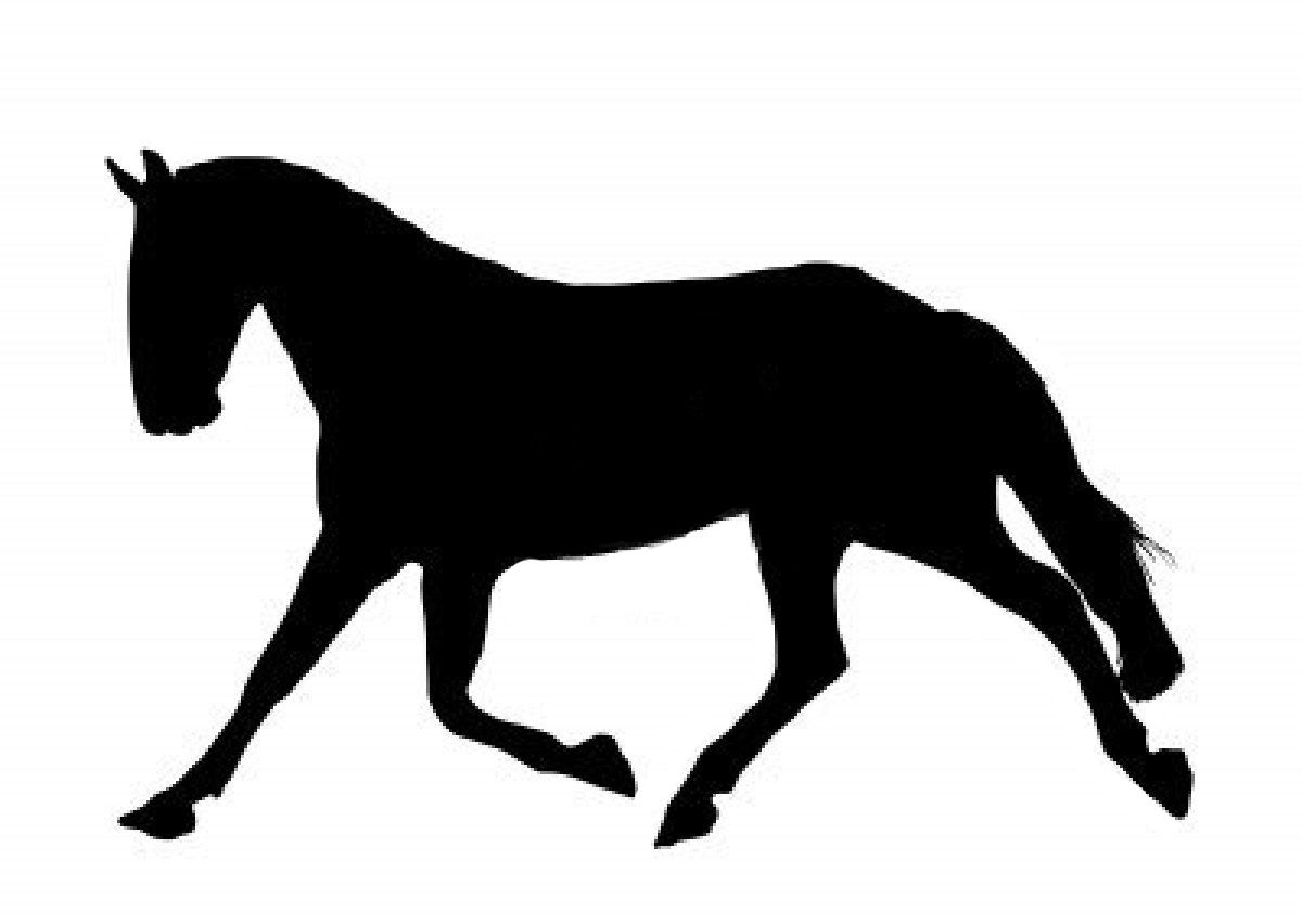1200x852 Pin By Karla Nelson On Horse Crafts Silhouettes