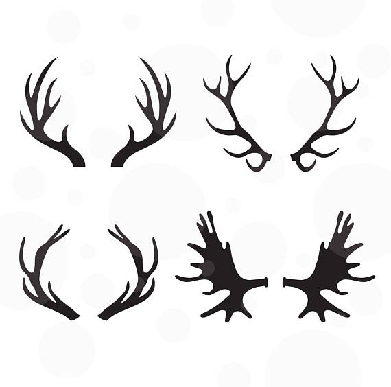 570x564 Antlers Svg Set Of 4 Vectors Cut File For Silhouette