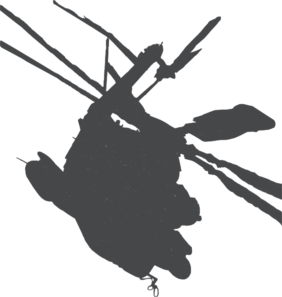 282x297 Helicopter Silhouette Clip Art