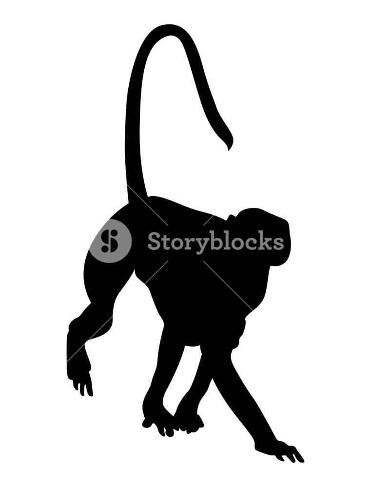 761x1000 Monkey Silhouette Royalty Free Stock Image