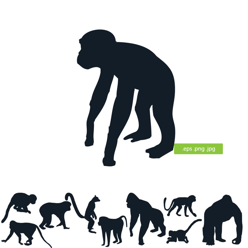 800x800 Monkeys Silhouette By Silhouettes Clipart