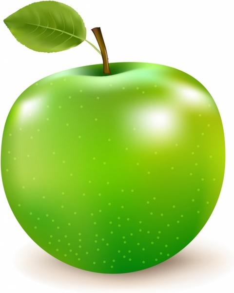 480x600 Green Apple Free Vector In Adobe Illustrator Ai ( Ai