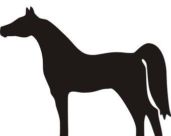 340x270 Arabian Horse Decal Etsy