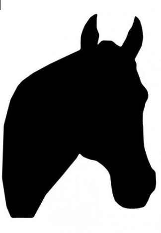 324x470 Horse Face Silhouette Photo