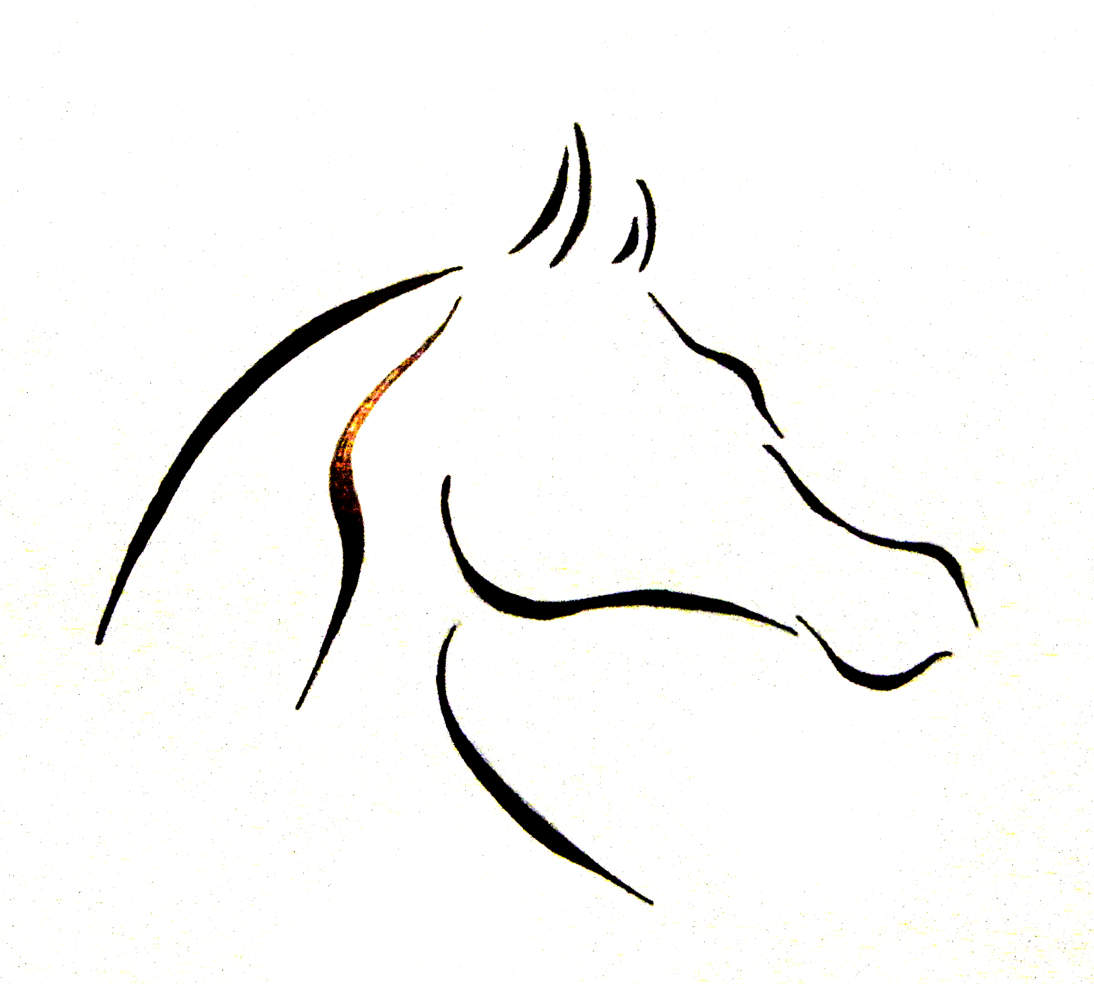 Arabian Horse Head Silhouette At Getdrawings Free For Personal