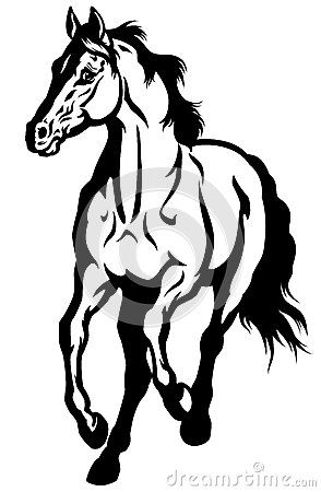 294x450 Black And White Horse Drawing Horses Horse Drawn