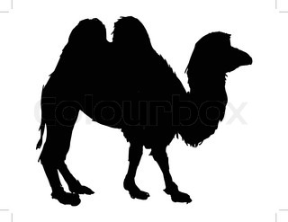 320x247 Silhouette Of Caravan Mit People And Camels Wandering Through