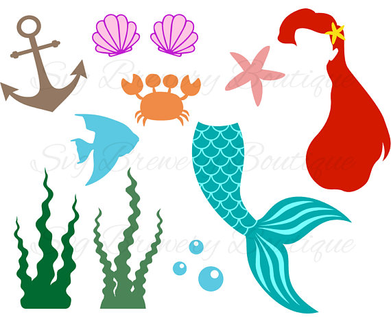 570x462 Pin By Leah Swicegood On Ariel Birthday Party Clam