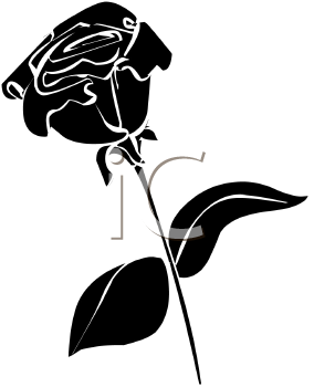 284x350 Free Rose Silhouette Cliparts, Hanslodge Clip Art Collection