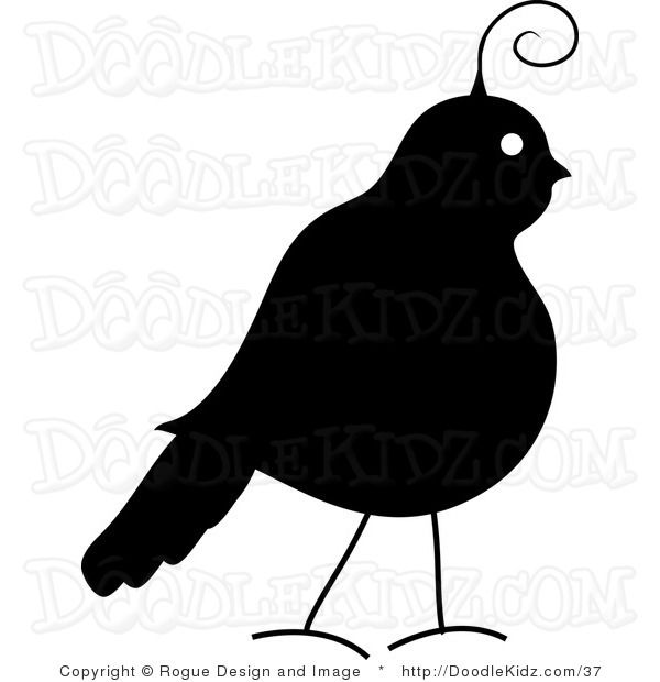600x620 Partridge Silhouette Clipart By Rogue Design Amp Image